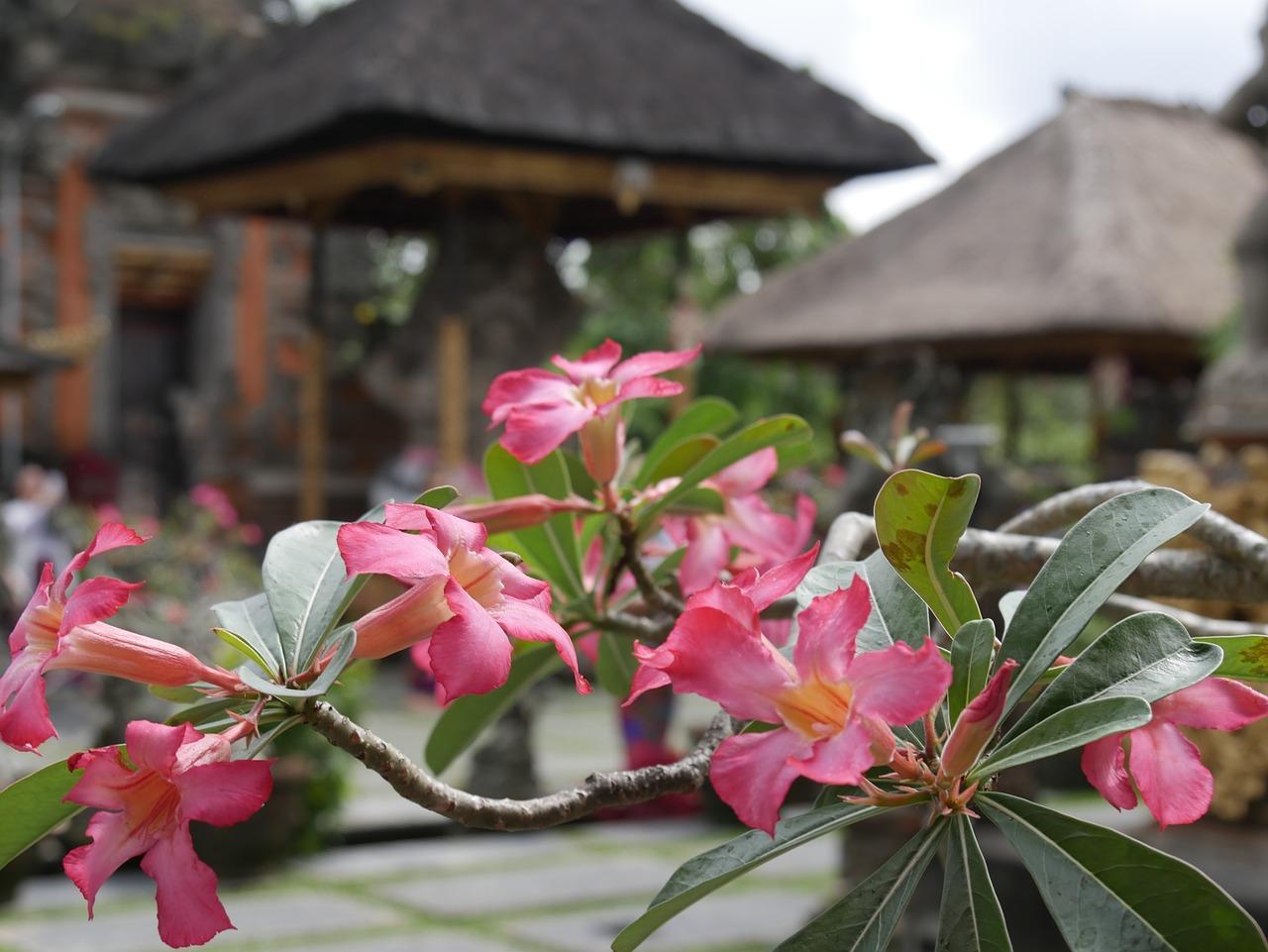 Wycieczka do Indonezji - informacje praktyczne przed wyjazdem